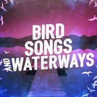 Bird Songs and Waterways — сборник
