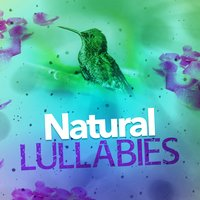 Natural Lullabies — Deep Sleep Nature Sounds