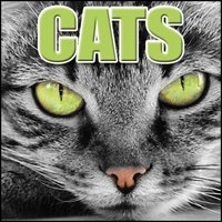 Cats: Sound Effects — Sound Effects Library