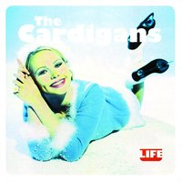 Life — The Cardigans