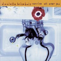 Arrive All Over You — Danielle Brisebois