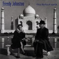 This Perfect World — Freedy Johnston