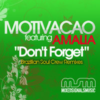 Don't Forget Remixes (Featuring Amalia) — Motivacao