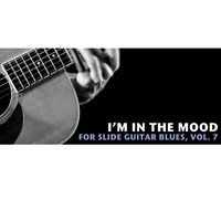 I'm in the Mood Slide Guitar Blues, Vol. 7 — сборник