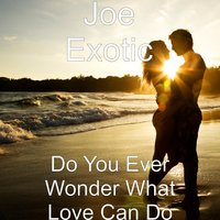 Do You Ever Wonder What Love Can Do — Joe Exotic
