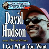 The Legendary Henry Stone Presents: David Hudson, featuring Honey Honey, I Got What You Want — David Hudson