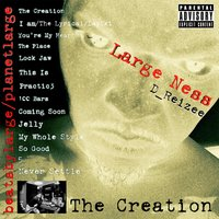 The Creation — Large Ness