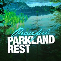 Peaceful Parkland Rest — Nature Sounds Sleep