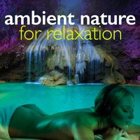Ambient Nature for Relaxation — Ambient Nature Sounds, Sounds of Nature for Deep Sleep and Relaxation, Ambient Nature Sounds|Nature Sounds|Sounds of Nature for Deep Sleep and Relaxation