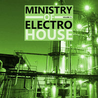 Ministry Of Electro House, Vol.13 — сборник