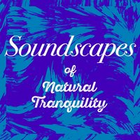 Soundscapes of Natural Tranquility — Soundscapes!