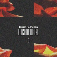 Music Collection. Electro House, Vol. 5 — сборник