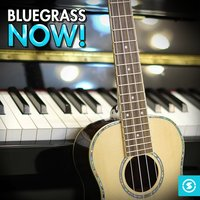 Bluegrass Now! — сборник