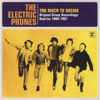 Too Much To Dream - Original Group Recordings: Reprise 1966-1967 — Electric Prunes