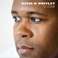 The Storm - Single — David B. Whitley
