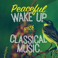 Peaceful Wake up with Classical Music — сборник