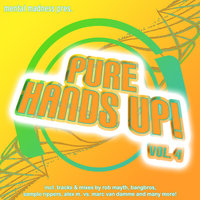 Mental Madness Pres. Pure Hands Up! Vol. 4 — Mental Madness