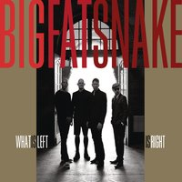 What Is Left Is Right — Big Fat Snake