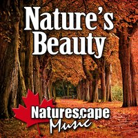 Nature's Beauty (Nature Sounds Only) — Naturescape Music