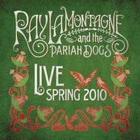 Live - Spring 2010 — Ray LaMontagne, The Pariah Dogs