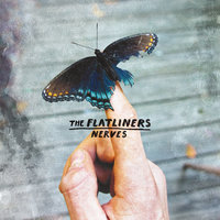 Nerves — The Flatliners