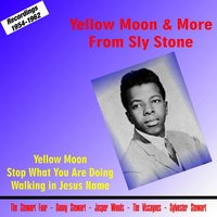 Yellow Moon & More from Sly Stone — Sly Stone