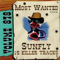 Most Wanted 878 — Sunfly Karaoke