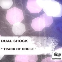 TRACK OF HOUSE — DUAL SHOCK