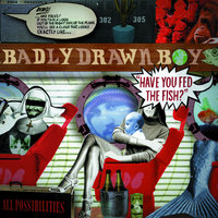 Have You Fed The Fish — Badly Drawn Boy
