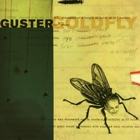 Goldfly — Guster
