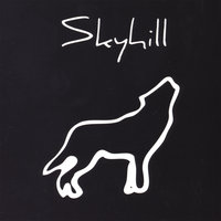 Run With The Hunted — Skyhill