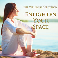 Enlighten Your Space — The Wellness Selection