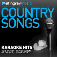Karaoke - In The Style Of Tim McGraw - Vol. 7 — Stingray Music (Karaoke)