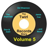 Twirl Records Story Volume 5 — сборник