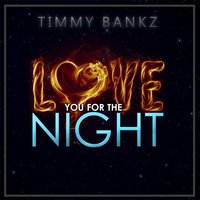 Love You for the Night — Timmy Bankz