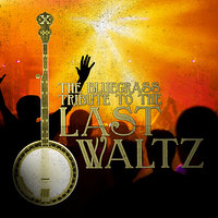 The Bluegrass Tribute to The Last Waltz — Pickin' On Series, BRAD DAVIS