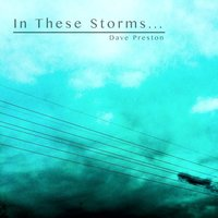 In These Storms... — Dave Preston