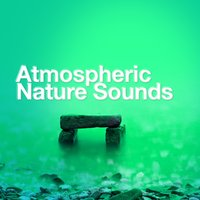 Atmospheric Nature Sounds — Meditation, Spa, Sounds of Nature Relaxation, Nature Sound Series, Massage Therapy, Nature Sounds Relaxation: Music for Sleep