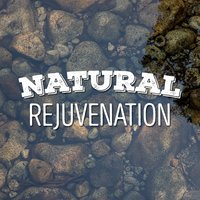 Natural Rejuvenation — Relaxing and Healing Sounds of Nature