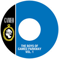 The Boys Of Cameo Parkway Vol. 1 — сборник