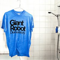 Domesticity — Giant Robot