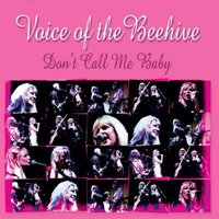 Don't Call Me Baby — Voice of the Beehive