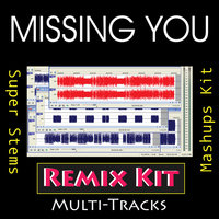 Missing You (Multi Tracks Tribute to The Black Eyed Peas) — REMIX Kit
