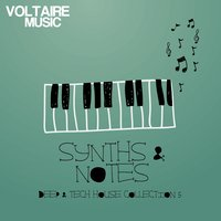 Synths and Notes 5.0 — сборник