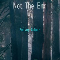 Not The End — Solitary Culture