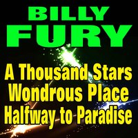 A Thousand Stars, A Wondrous Place, Halfway to Paradise — Billy Fury