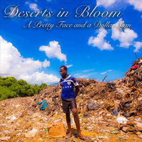 A Pretty Face and A Dollar Sign — Deserts In Bloom
