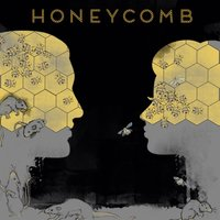 Honeycomb — Summer Underground