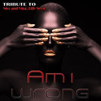 Am I Wrong: Tribute To Nico & Vinz, Lilly Wood — Tom Glow, Sarah Kelly