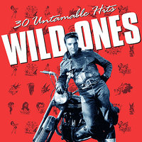 Wild Ones - 30 Untamable Hits — сборник